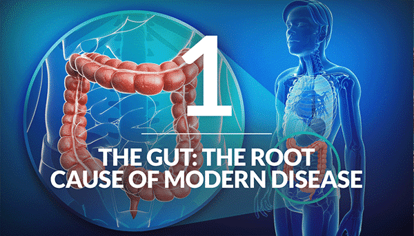 The Gut: The Root Cause of Modern Disease