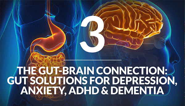 The Gut-Brain Connection: Gut Solutions for Depression, Anxiety, ADHD and Dementia