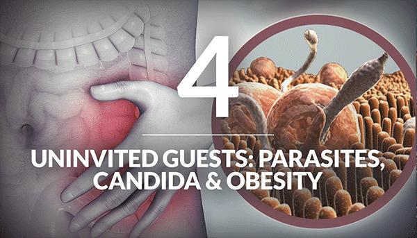 Unwanted Visitors: Parasites, Candida & Obesity